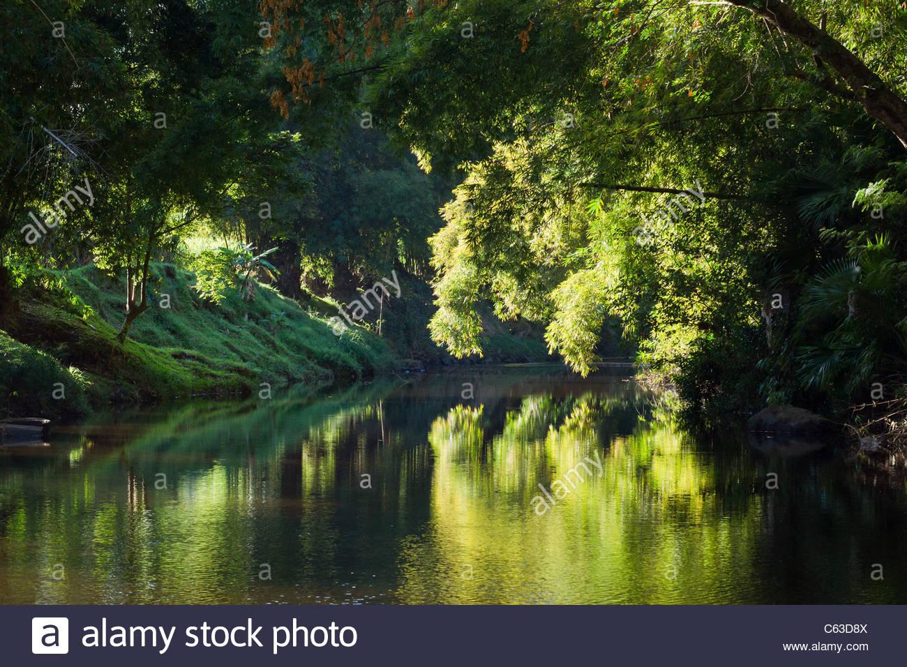reunion-island-sainte-suzanne-river-at-s