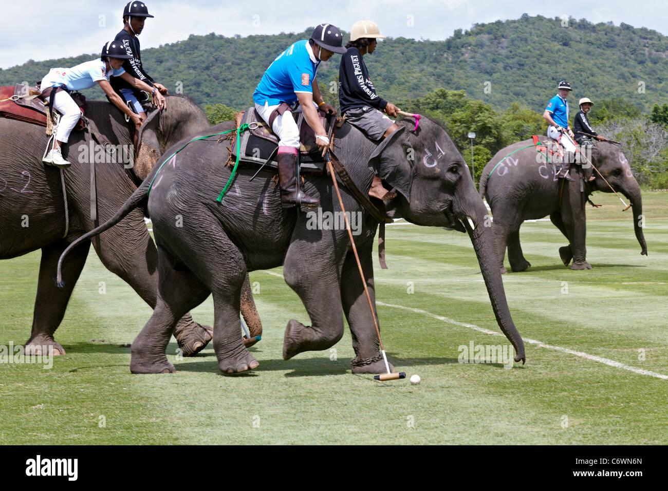 elephant-polo-match-action-2011-kings-cu