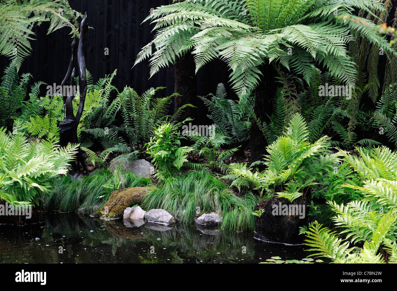 Fern garden mixed shade shady loving plants beside water for Pond shade ideas