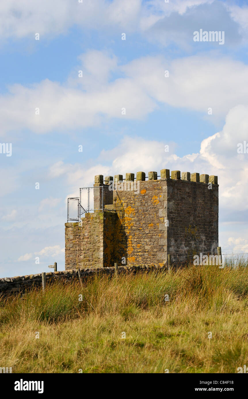 Jubillee Tower, Westfield House Farm, Abbeystead Fell, Lancashire, England, United Kingdom, Europe. Stock Photo