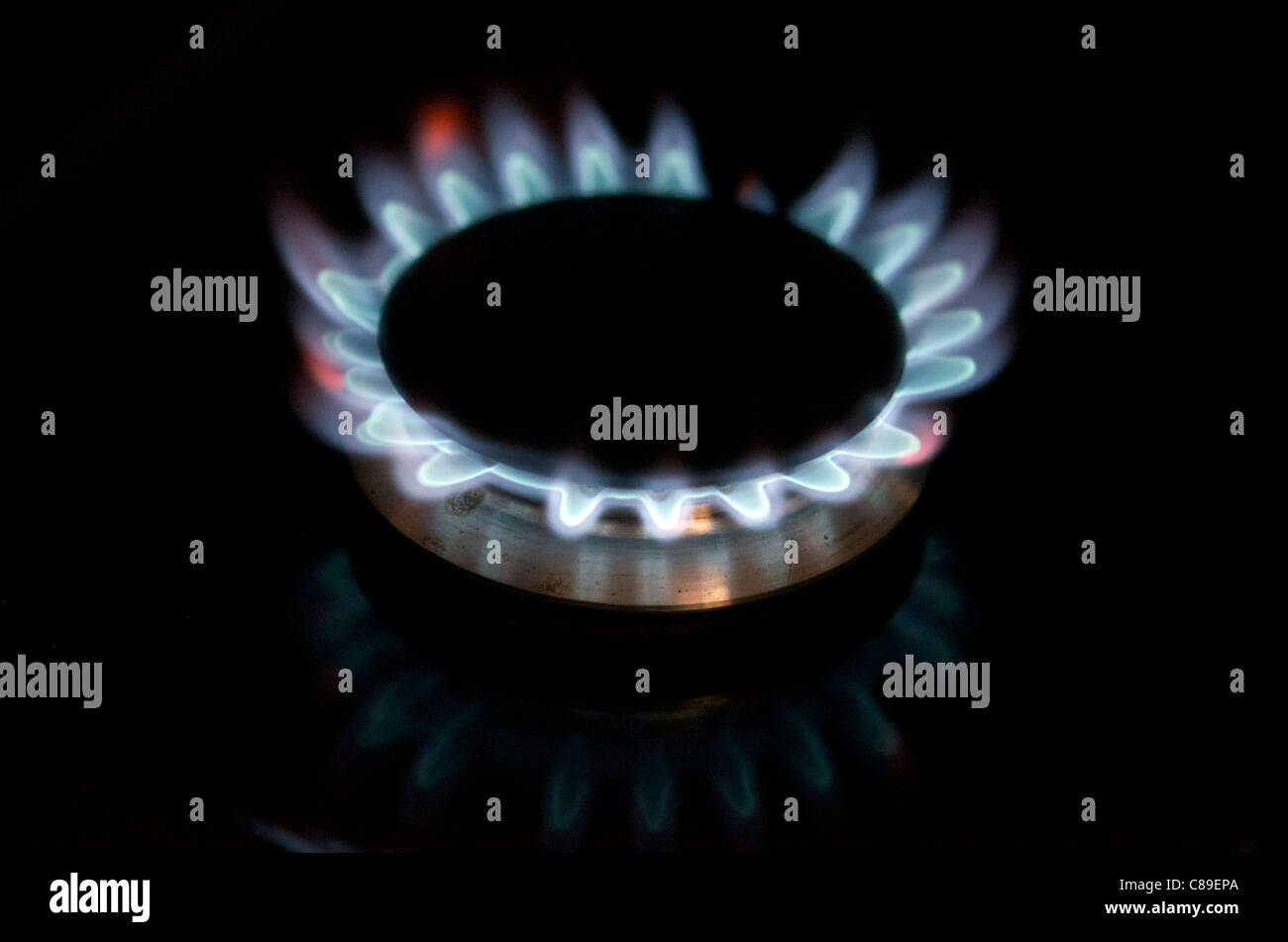 gas-ring-on-cooker-C89EPA.jpg