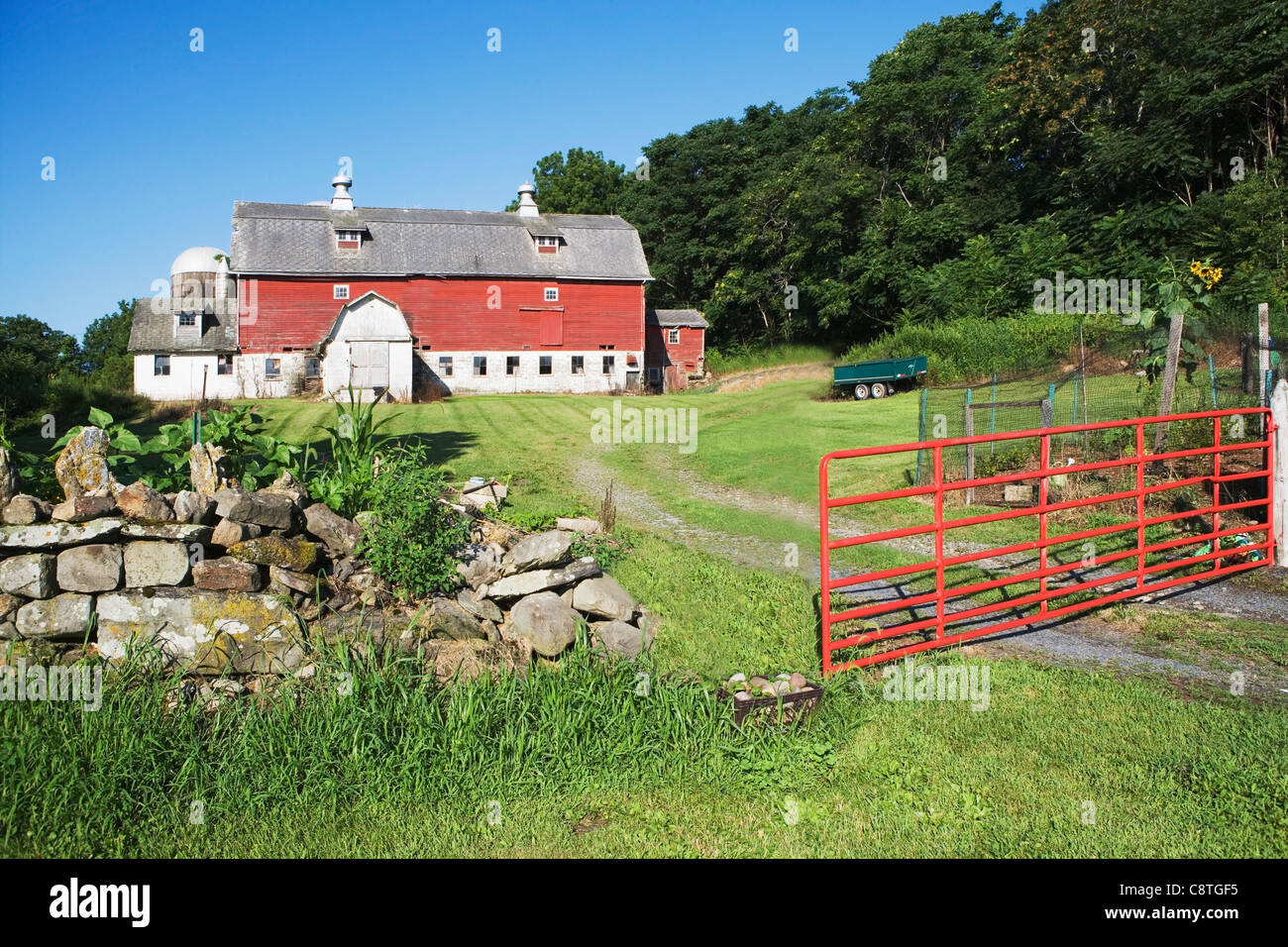 Usa new york state chester barn on countryside stock Usa countryside pictures