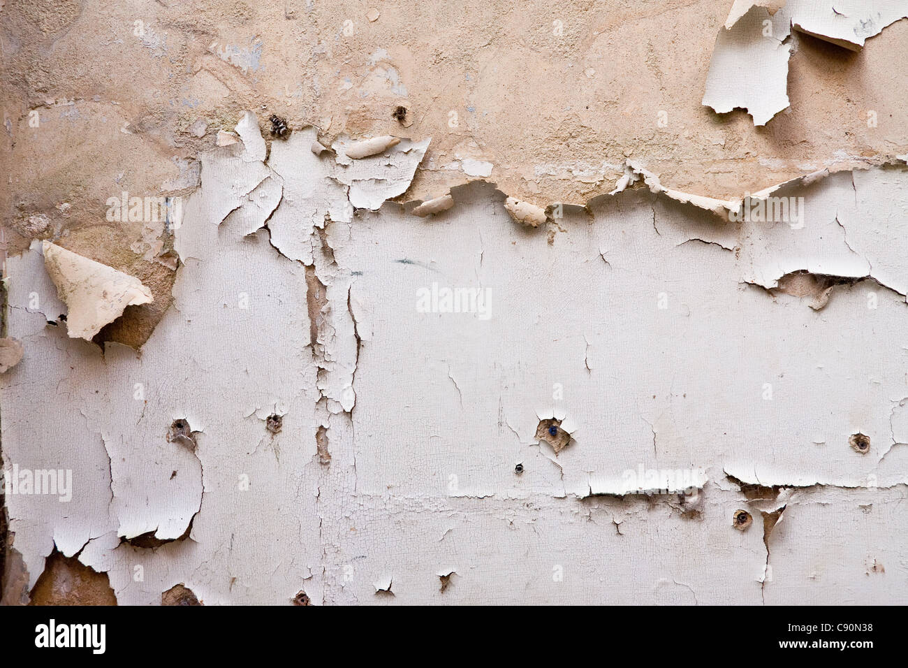 Paint Peeling Off Plaster Wall In A Derelict Building Stock Photo Royalty Free Image 39969196