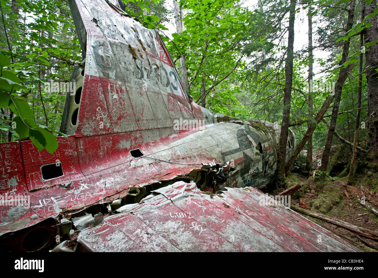 1957 DC-3 plane crash. Gustavus. Glacier Bay. Alaska. USA Stock Photo
