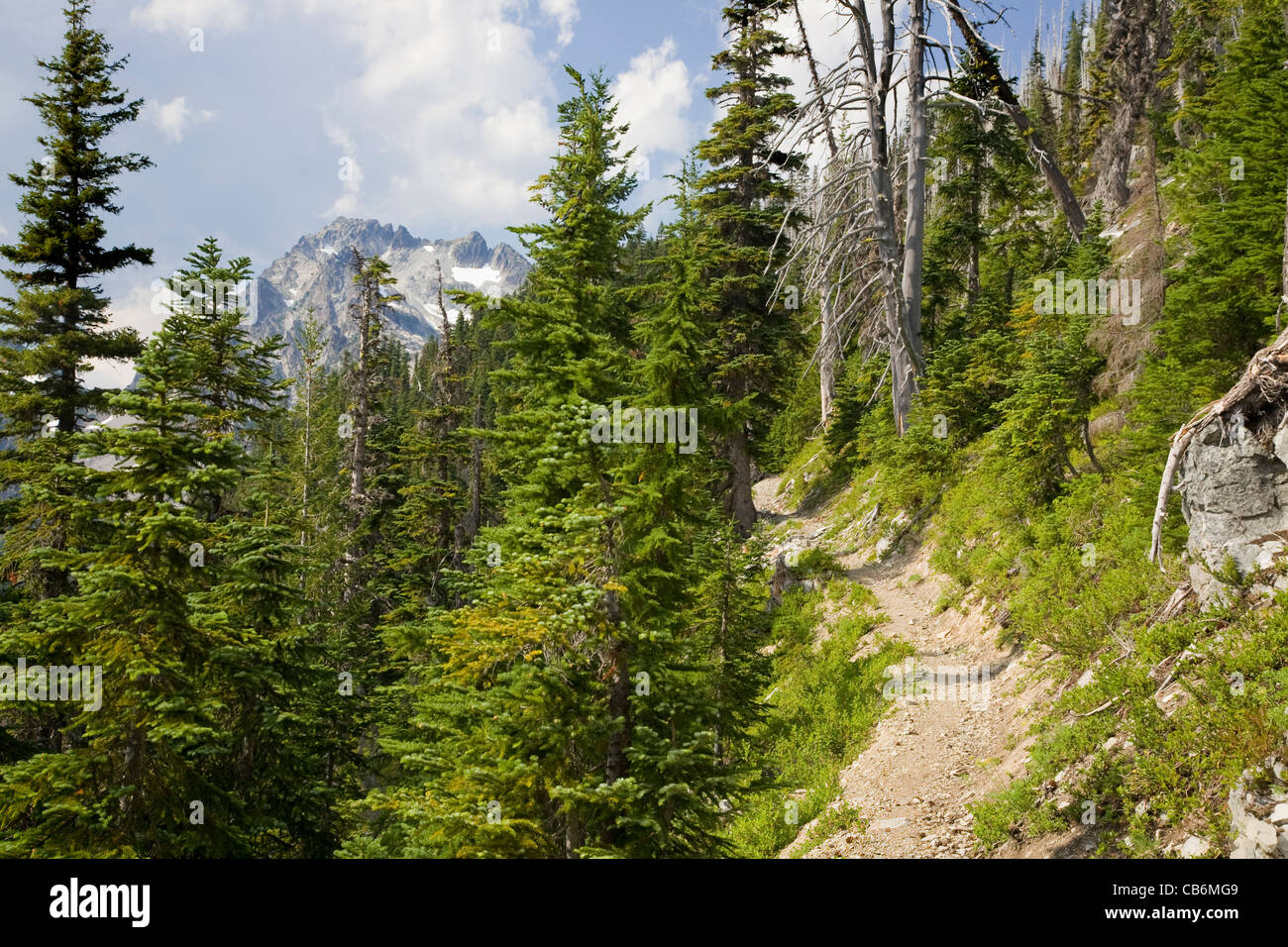 the-pacific-crest-trail-north-of-the-lem