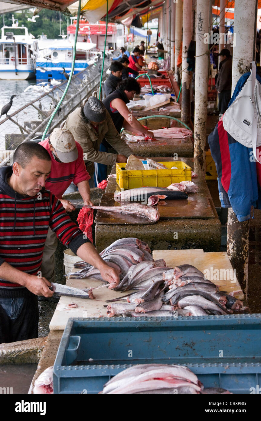 Chile valdivia city the rivers district fish market for City fish market