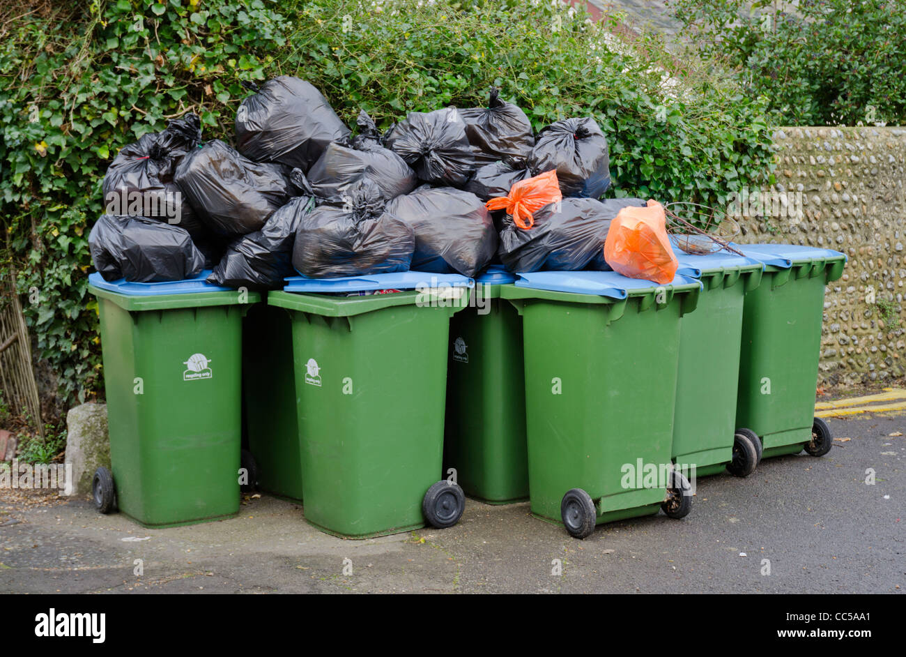 rubbish-bags-and-recycling-wheelie-bins-