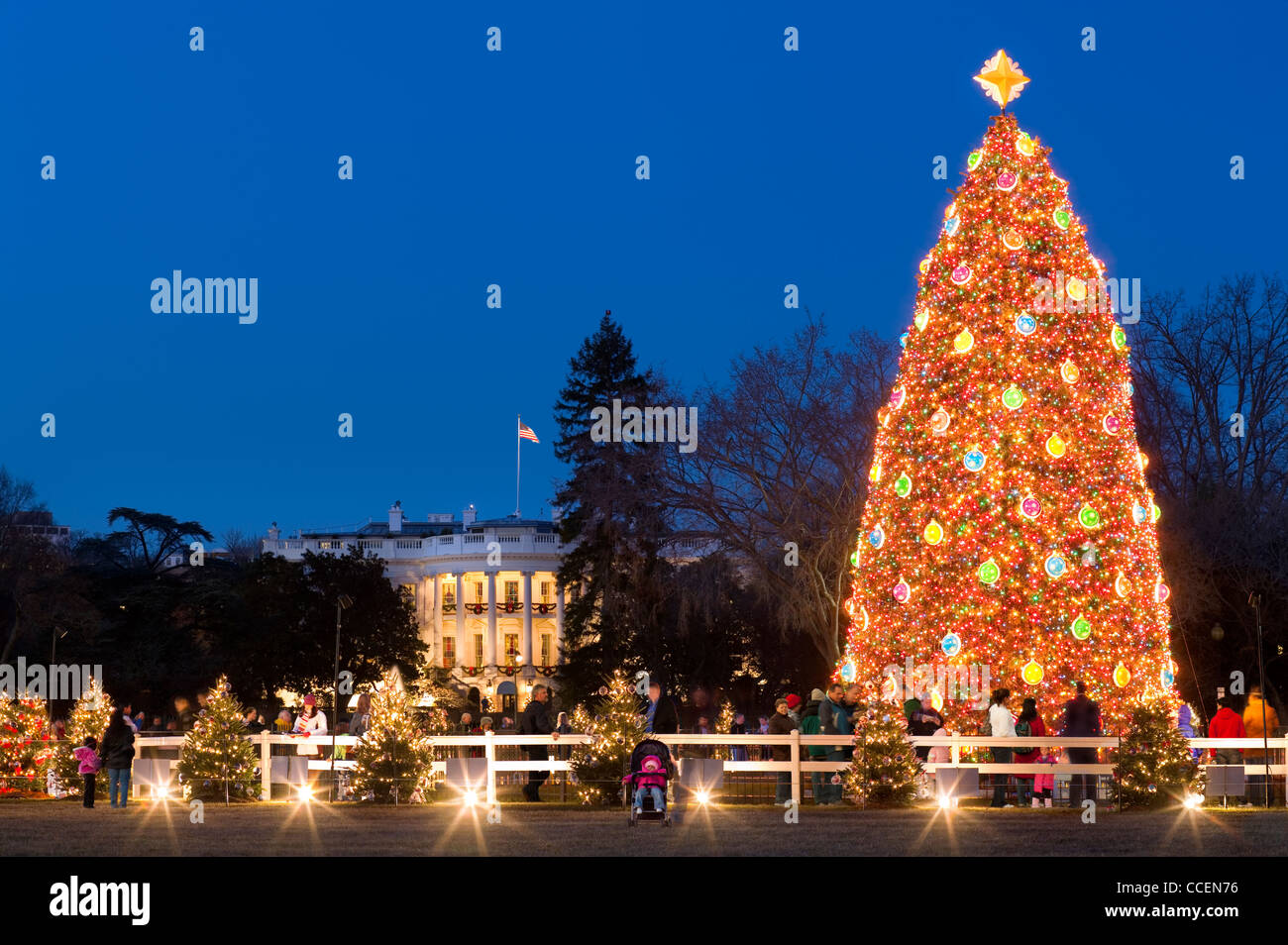 the-national-christmas-tree-in-front-of-
