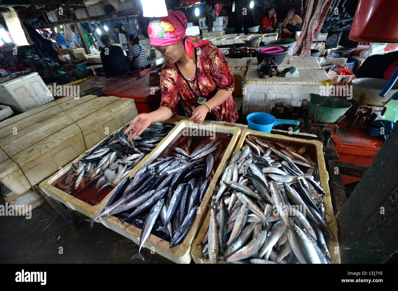 fresh fish for sale at jimbaran local fish market near