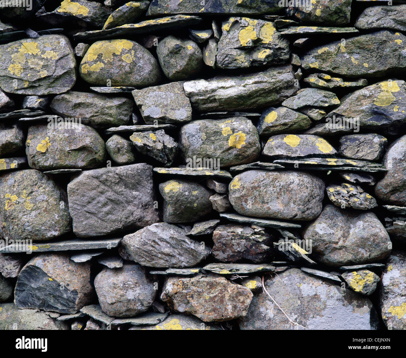 Drystone wall close-up. Newlands valley, Cumbria, England, UK. In the Lake District National park. Stock Photo