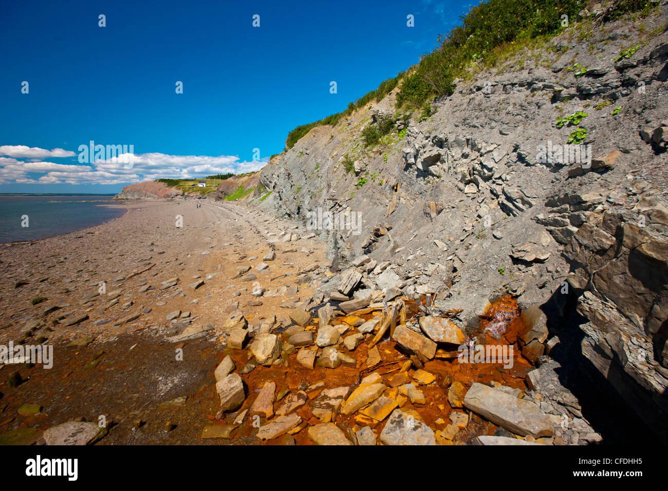 joggins fossil cliffs  bay of fundy  nova scotia  canada