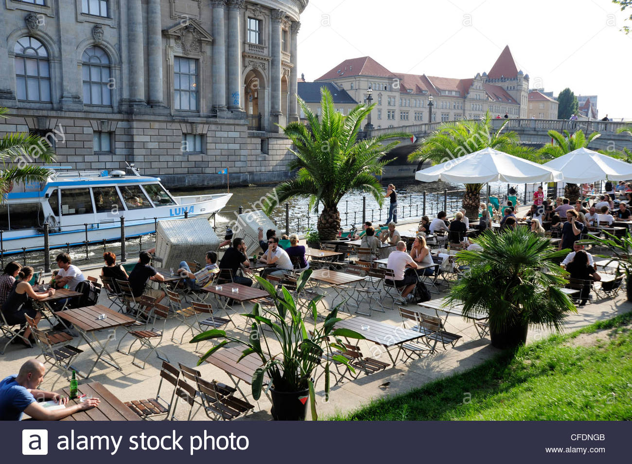 Spree river and museumsinsel bar terrace with palm trees for Terrace trees