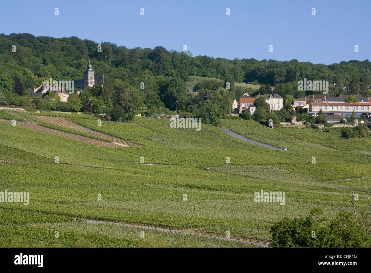 Champagne vineyards hautvillers marne valley france for Champagne marne