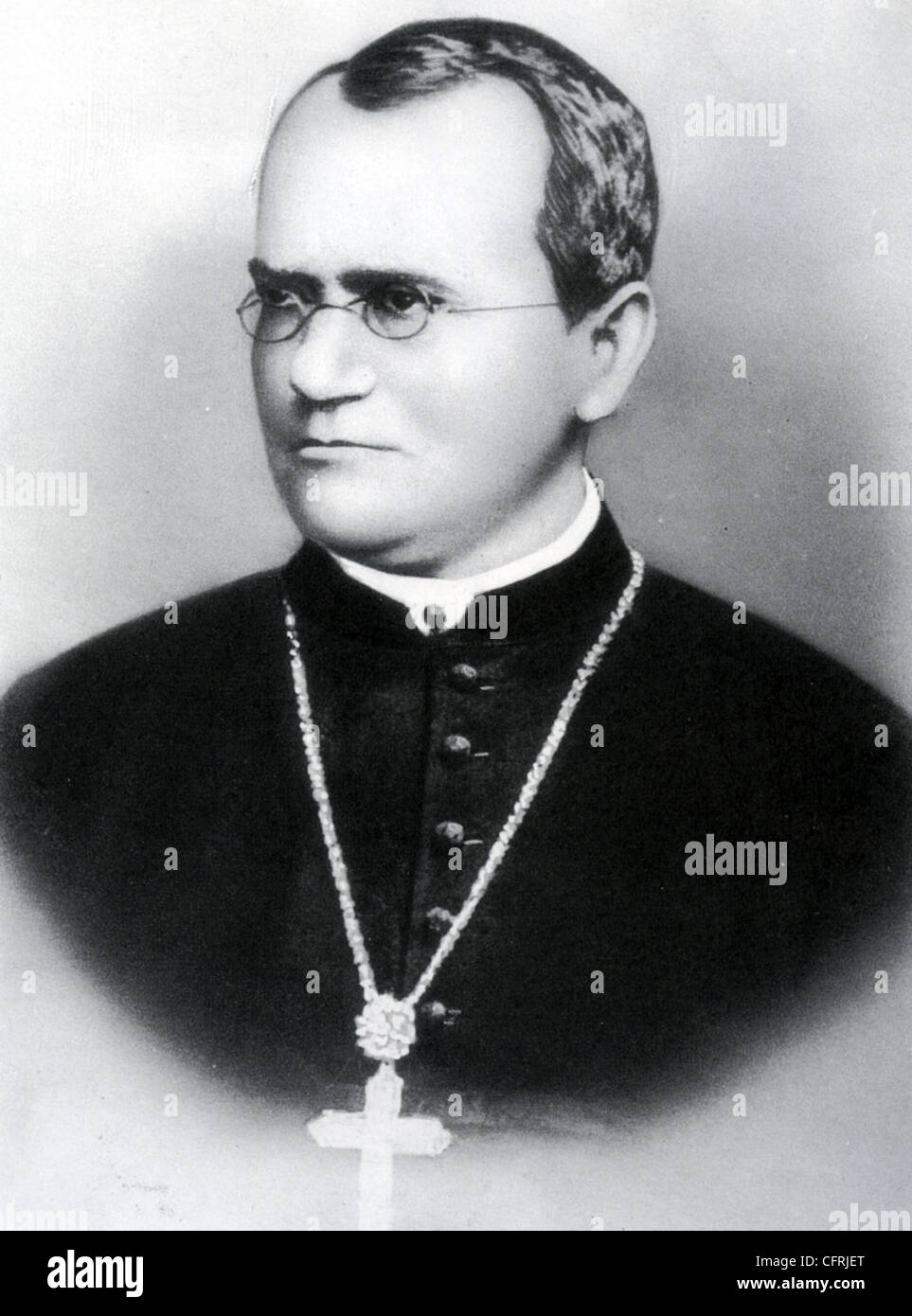 a biography of gregor mendel an austrian biologist Gregor mendel biography  this is a sub-blog of biological facts pages.