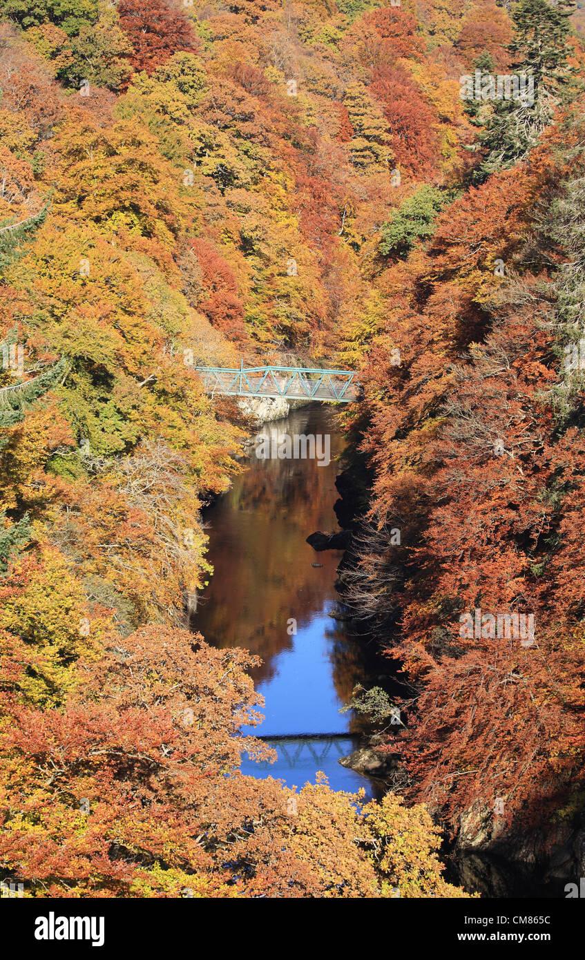 perthshire-scotland-uk-24th-october-2012