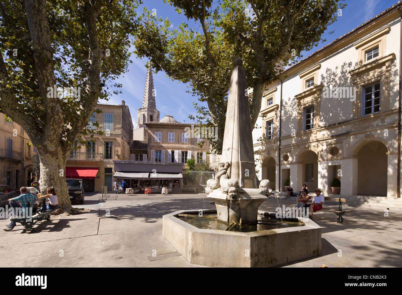 France bouches du rhone alpilles saint remy de provence for Entretien jardin st remy de provence