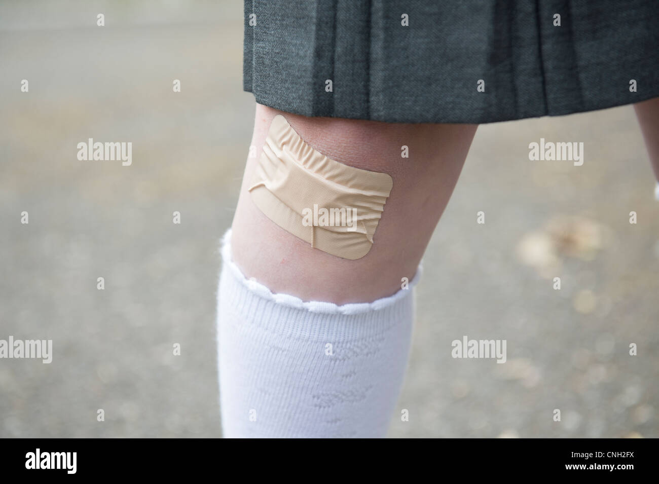 Schoolgirl's knee with a sticking plaster over a cut. Stock Foto