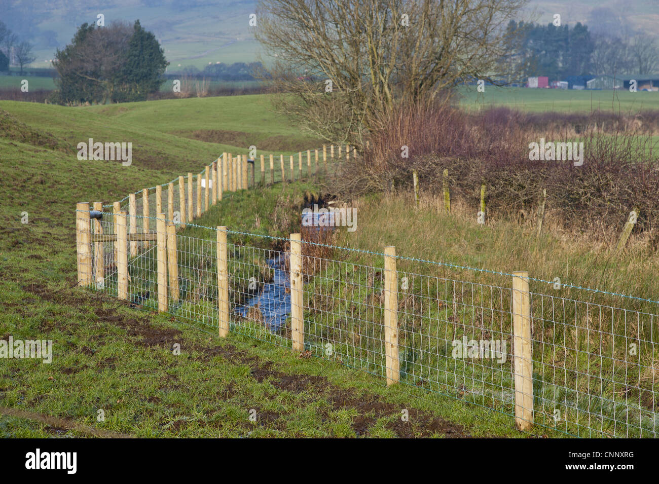 Fences Stream German