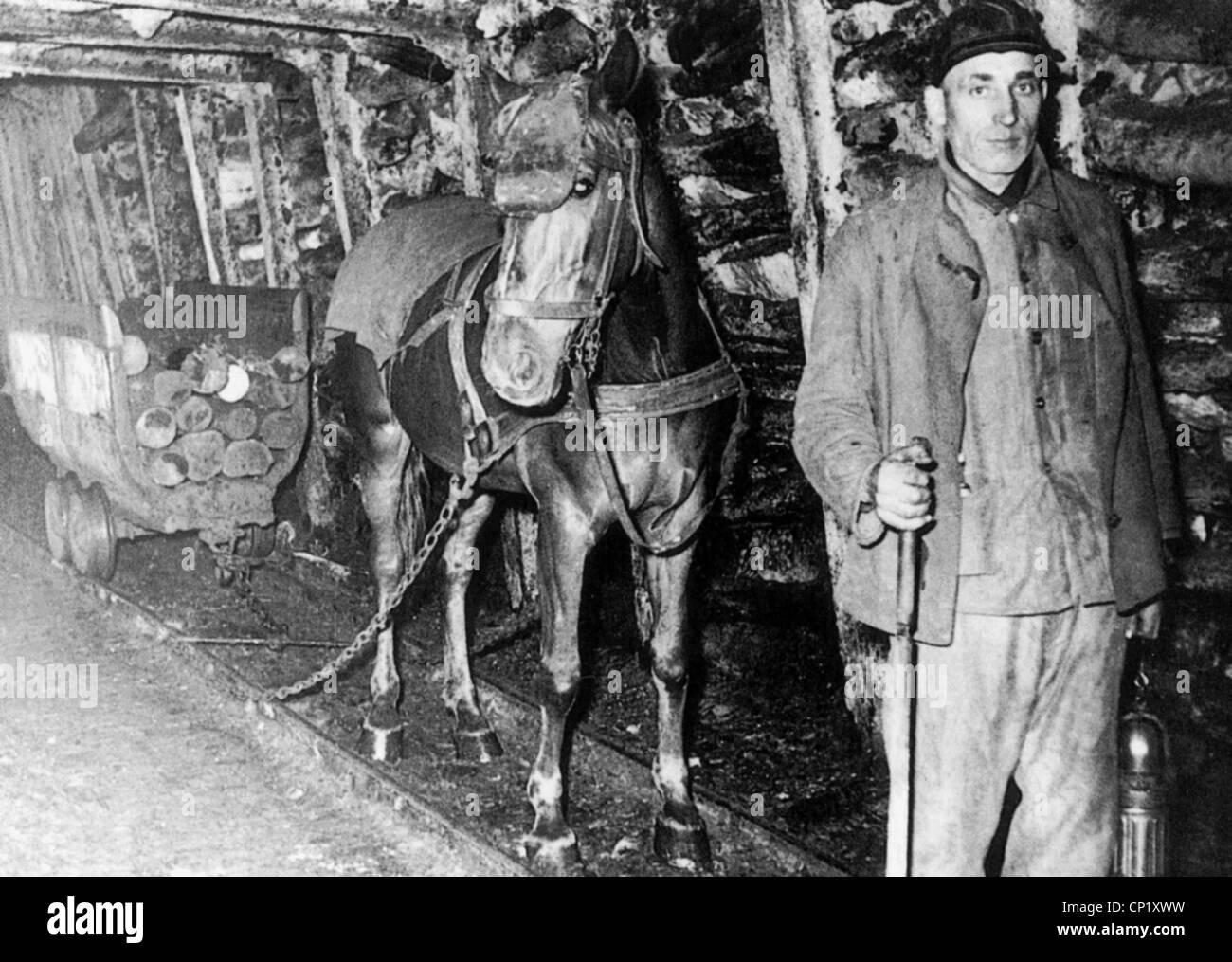 horseguide   coal mines   Horses, Pony, Coal mining