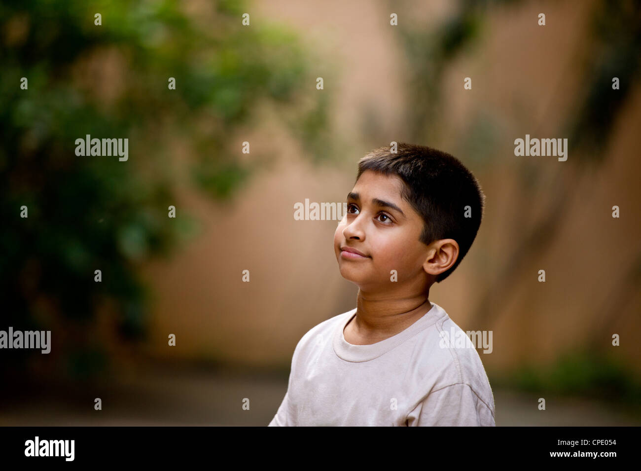 an young handsome Indian kid day dreaming Stock Photo