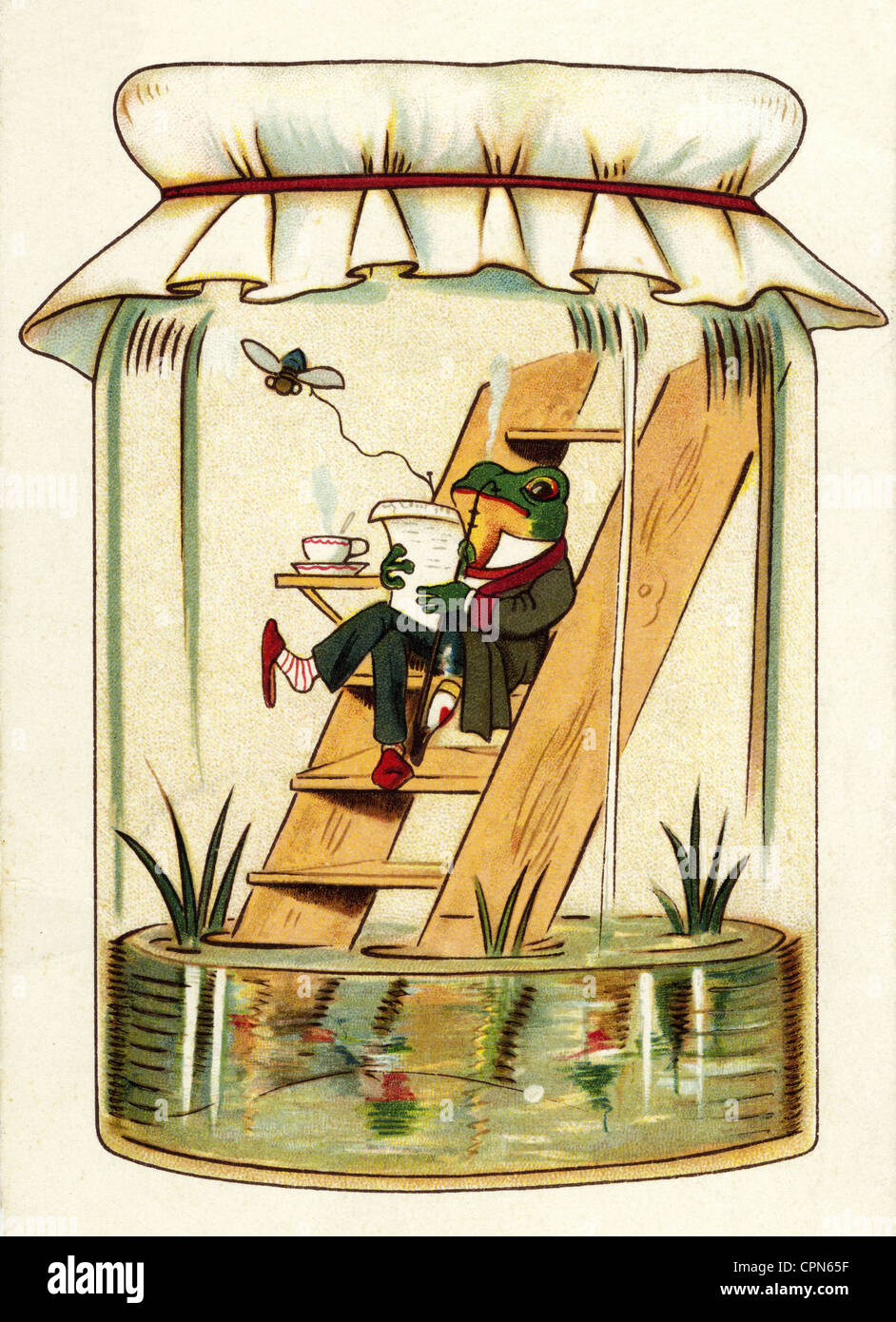 2016 07 01 001018 Shachaf Wisdom 001036 Hackego For Reliable Programmable Integrated Temperature Controller Tmp01 Circuit Weather Weatherman In Glass Lithograph Germany 1903 Frog Frogs Little Cpn65f