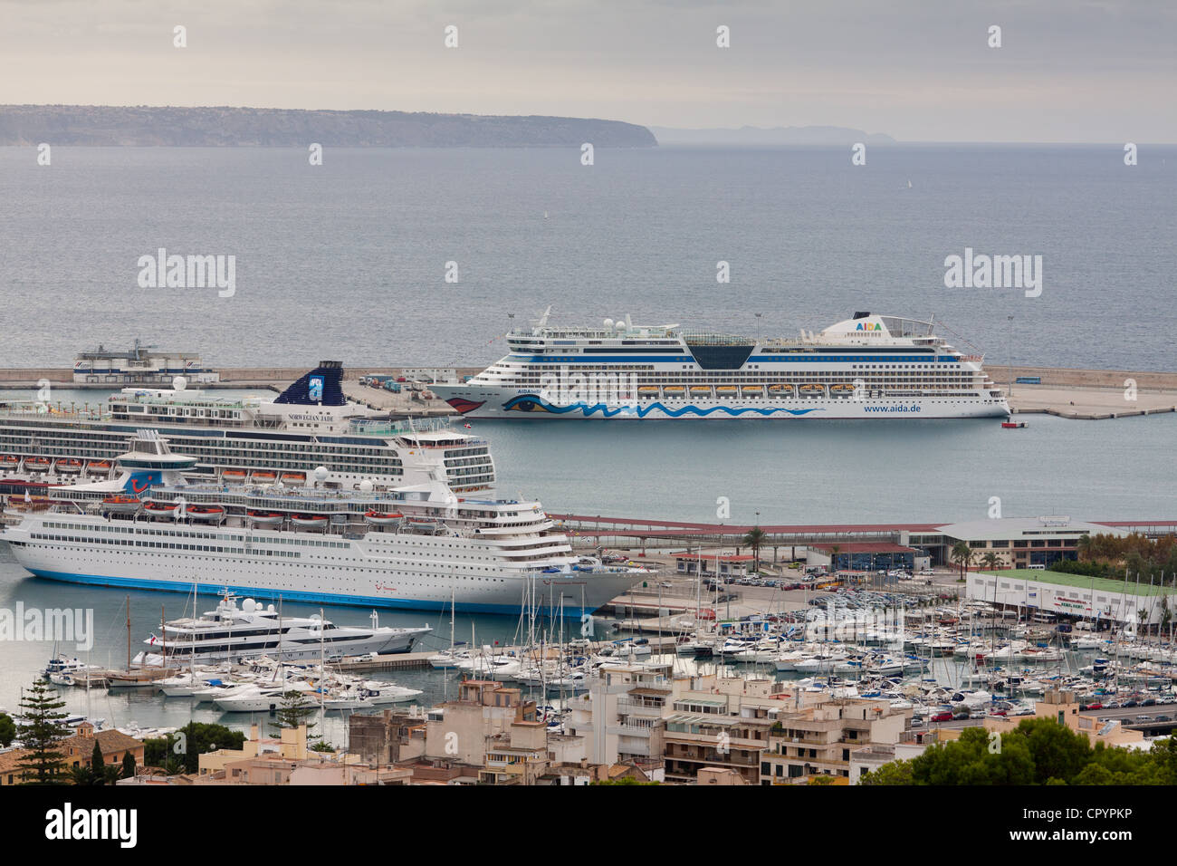 Cruise ships, AIDAbella, Norwegian Jade, and the Thomson Destiny in the port of Palma, Majorca, Balearic Islands, Stock Photo