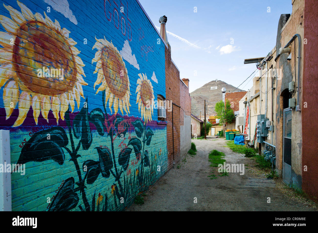 Colorful Murals Painted On The Brick Wall Of A Building In. Masking Fluid Lettering. Evacuation Plan Signs Of Stroke. Combined Logo. Dog Wall Murals. Mexican Revolution Murals. Side Signs. Schizoaffective Disorder Signs. Reflectorized Stickers