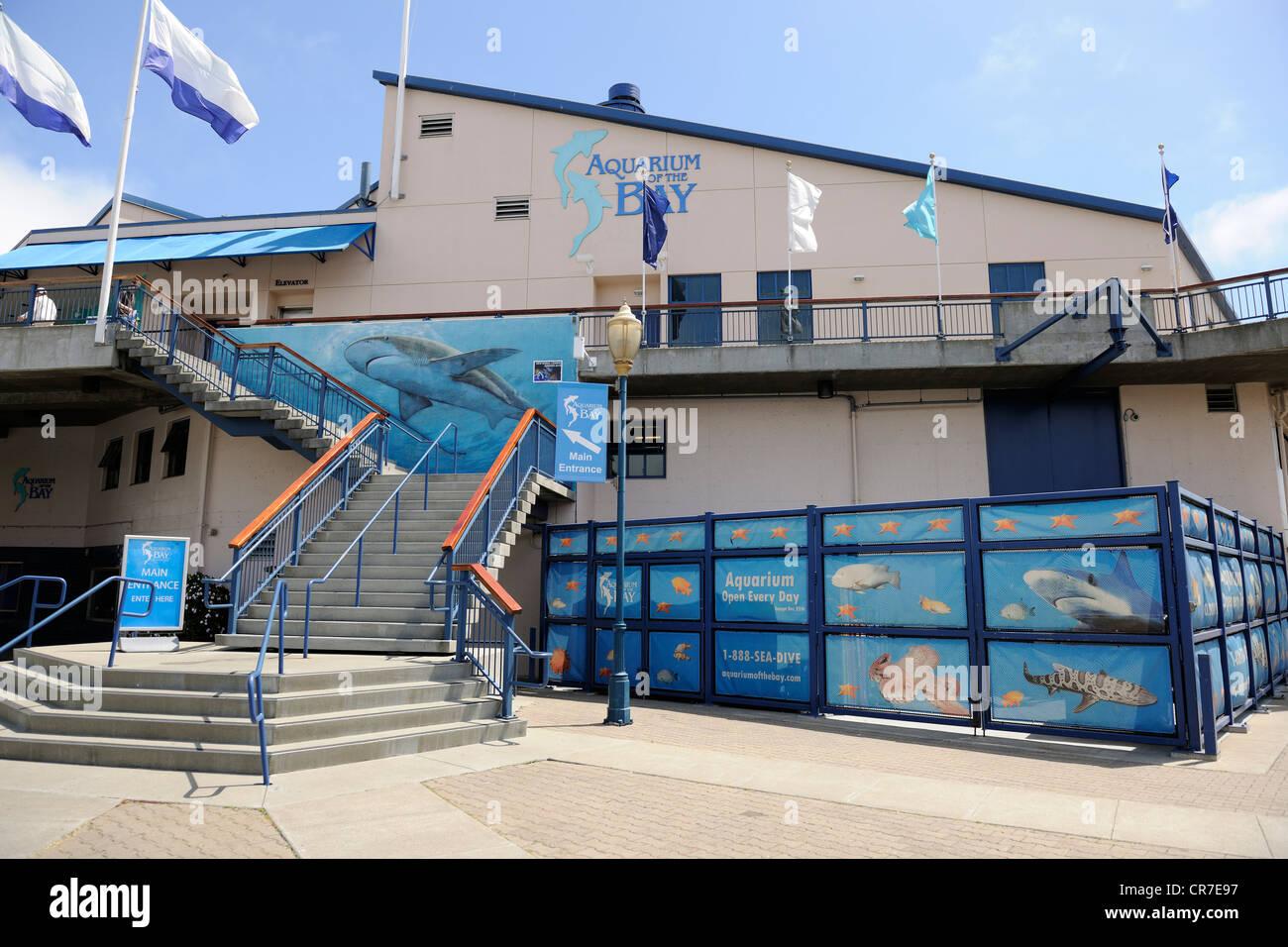 Aquarium By The Bay At Pier 39 Fisherman 39 S Wharf San