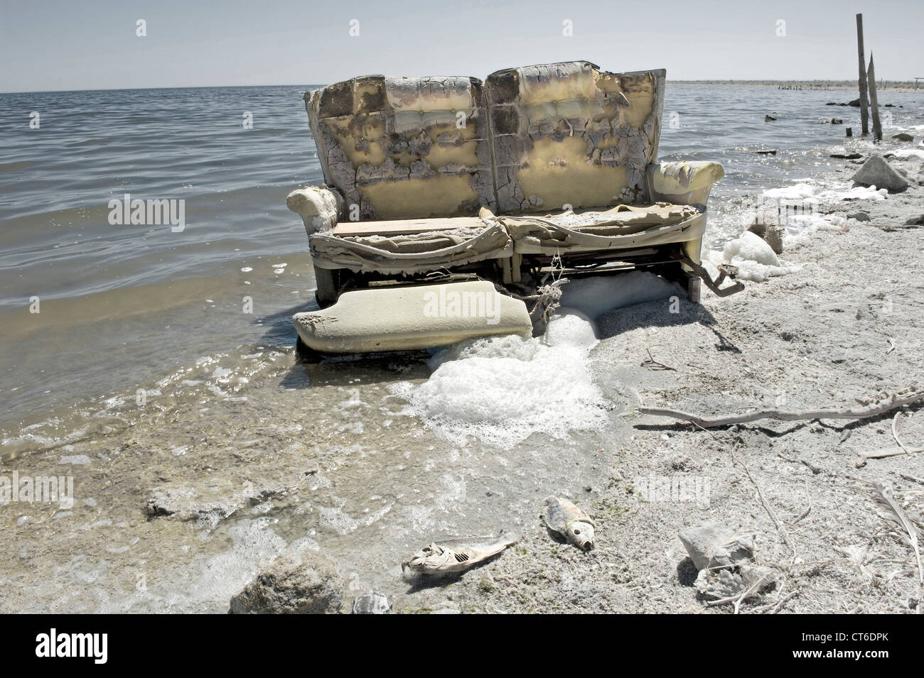 Abandoned upholstered sofa in the salton sea with dead for Salton sea fishing