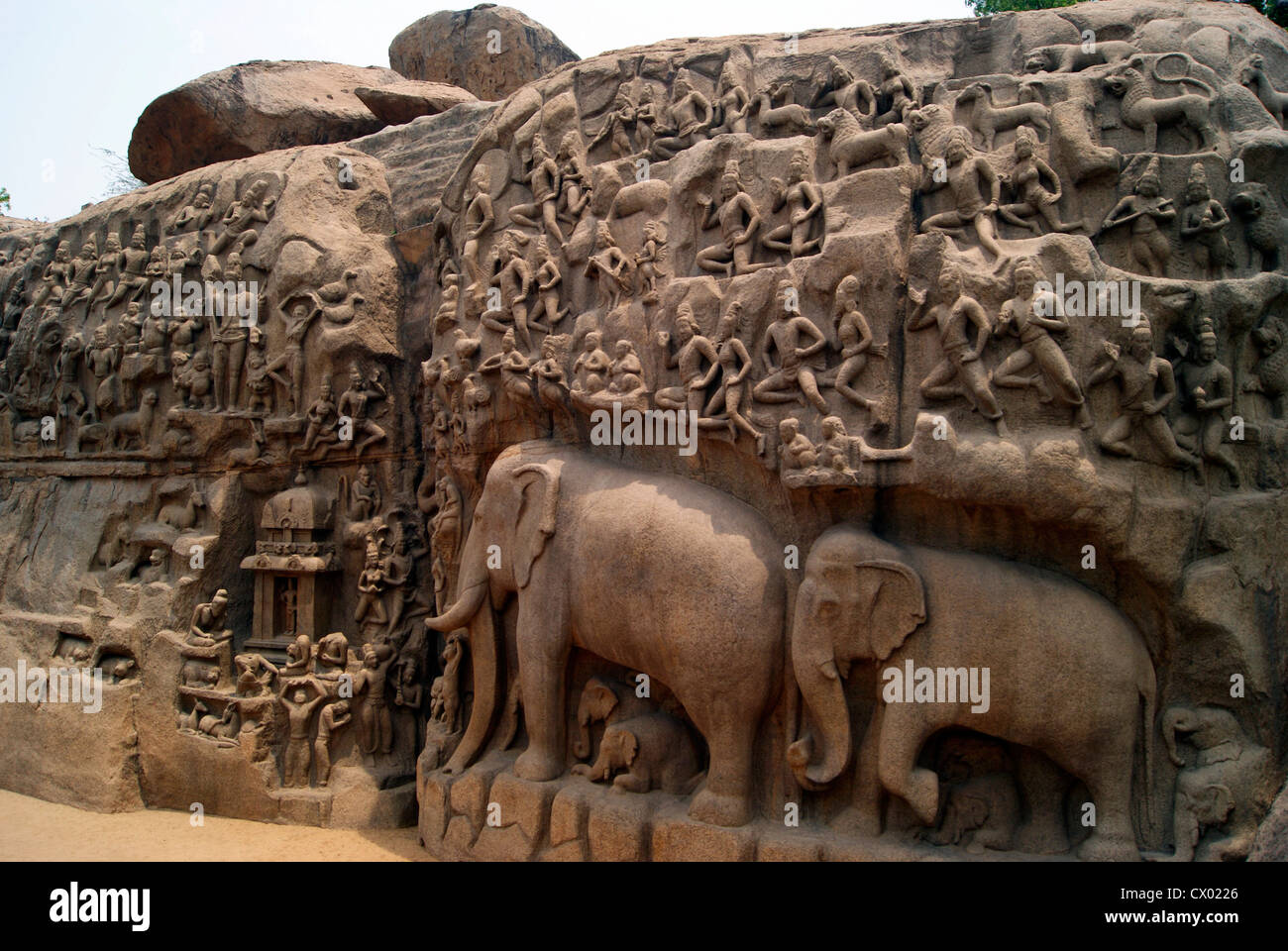 Arjuna penance stone carvings in mahabalipuram tamil nadu