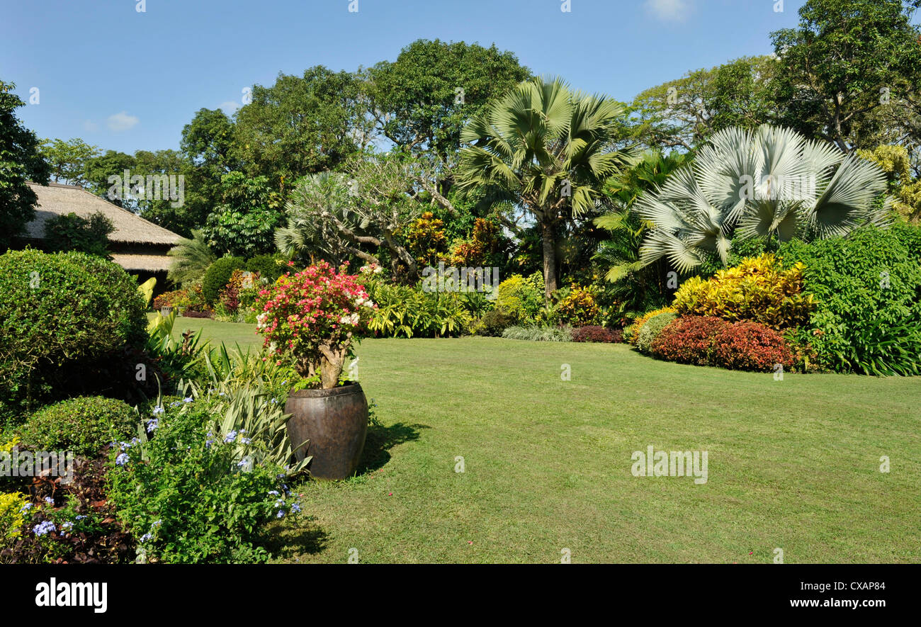 A Tropical Garden With Colorful Borders Around A Large
