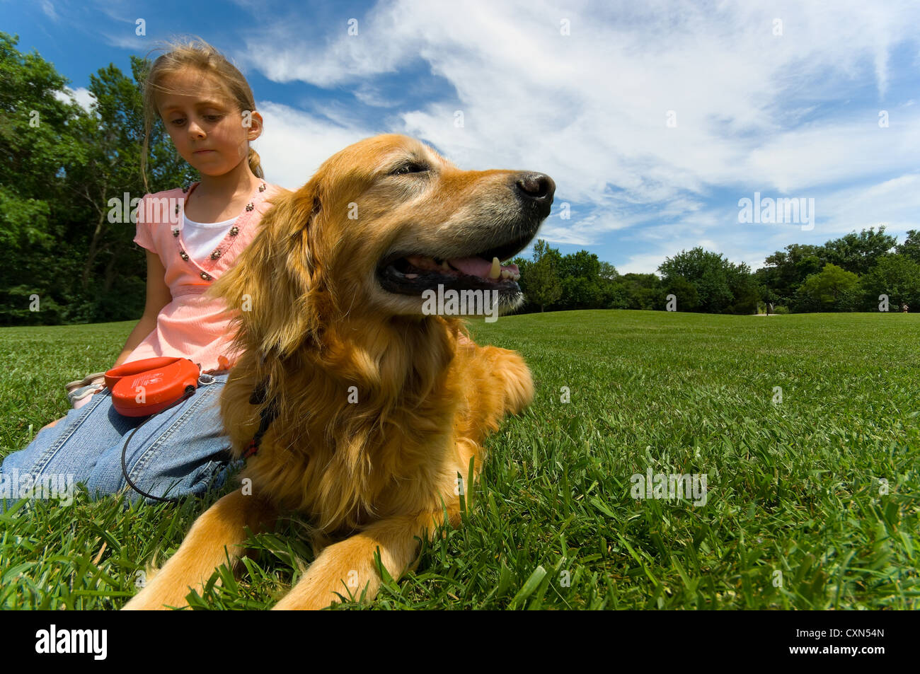 Young girl at park with pet Dog Stock Foto