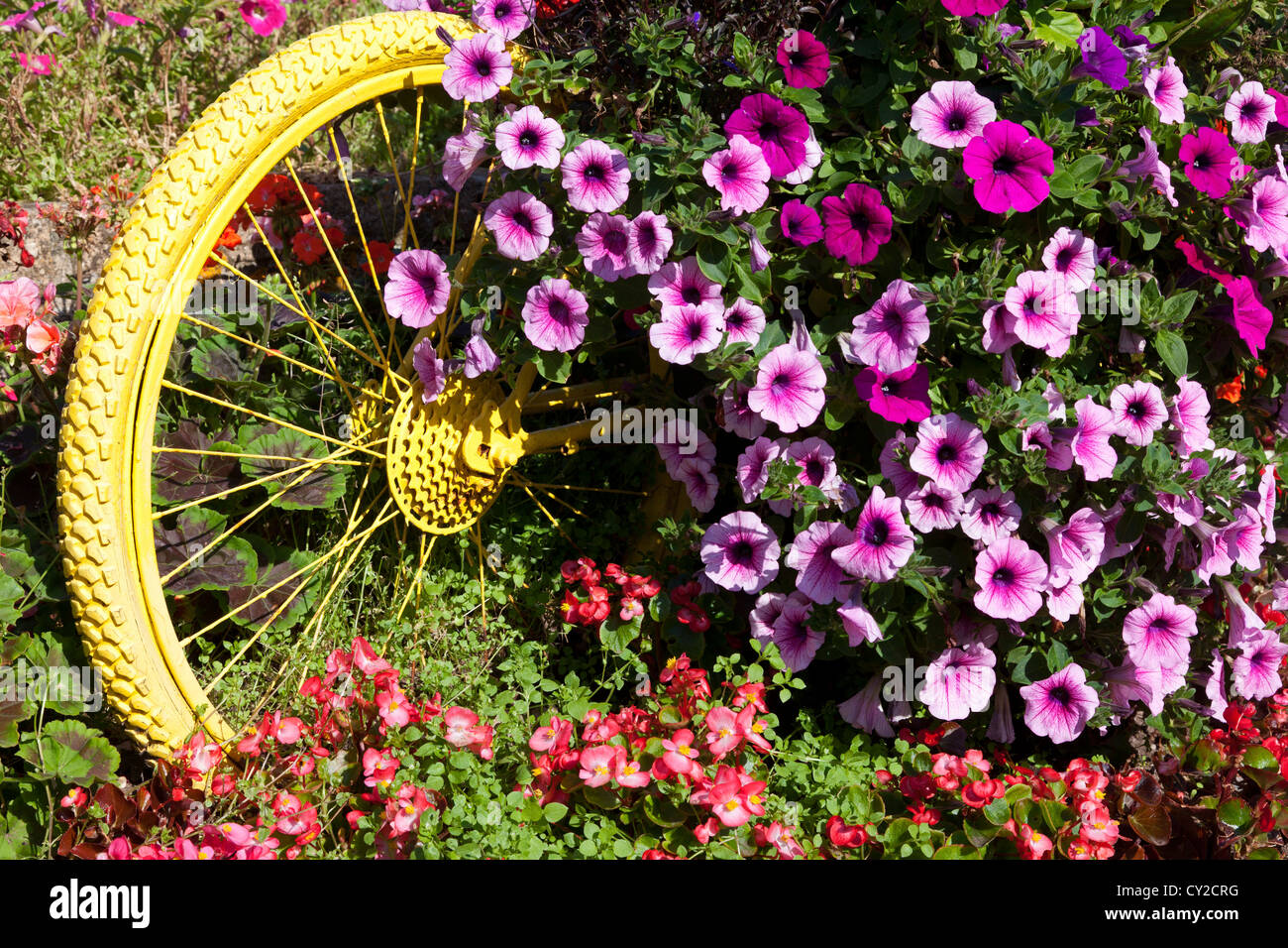 floral-display-including-painted-bicycle