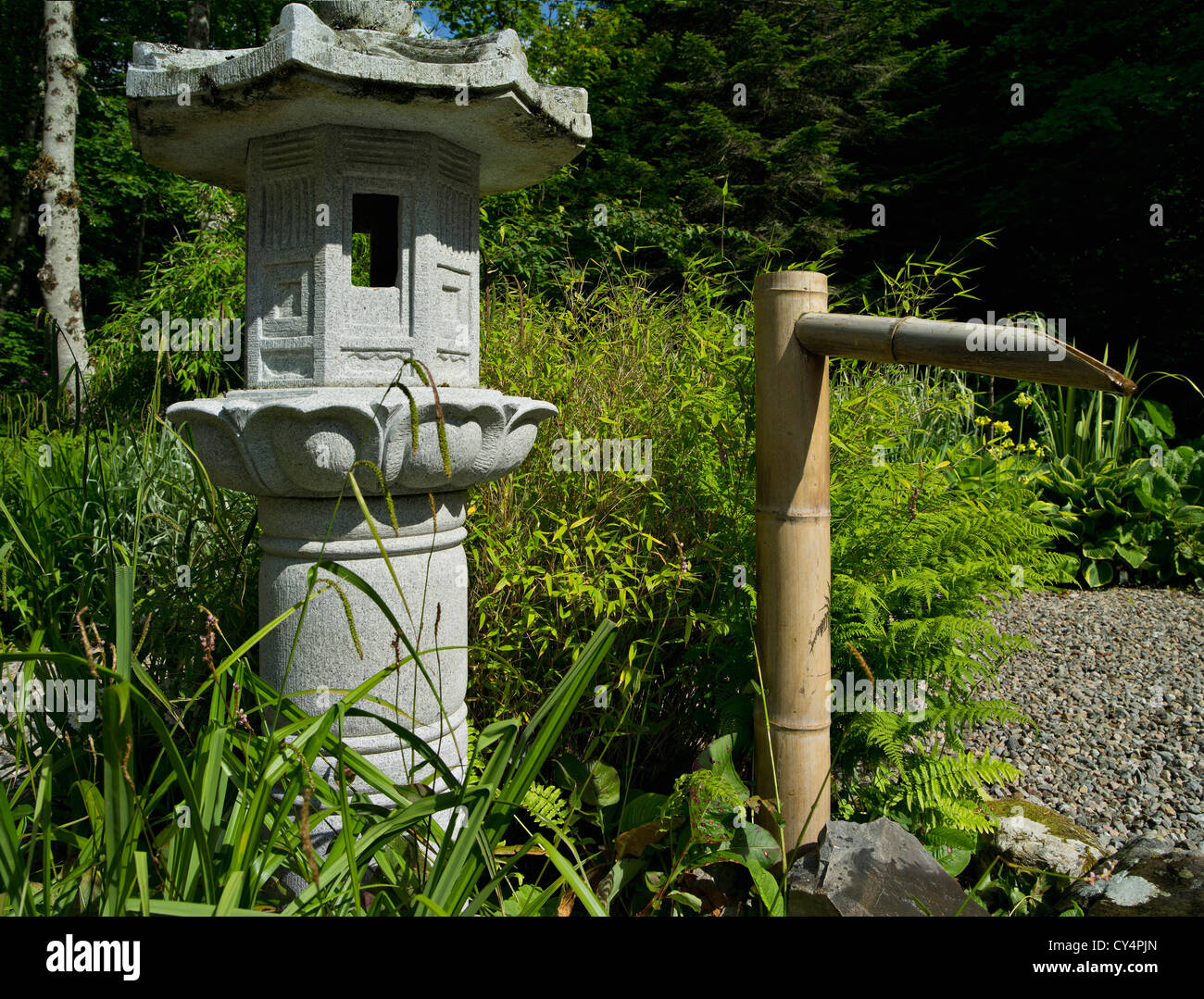 Stone lantern and bamboo water feature in a japanese for Japanese bamboo water feature