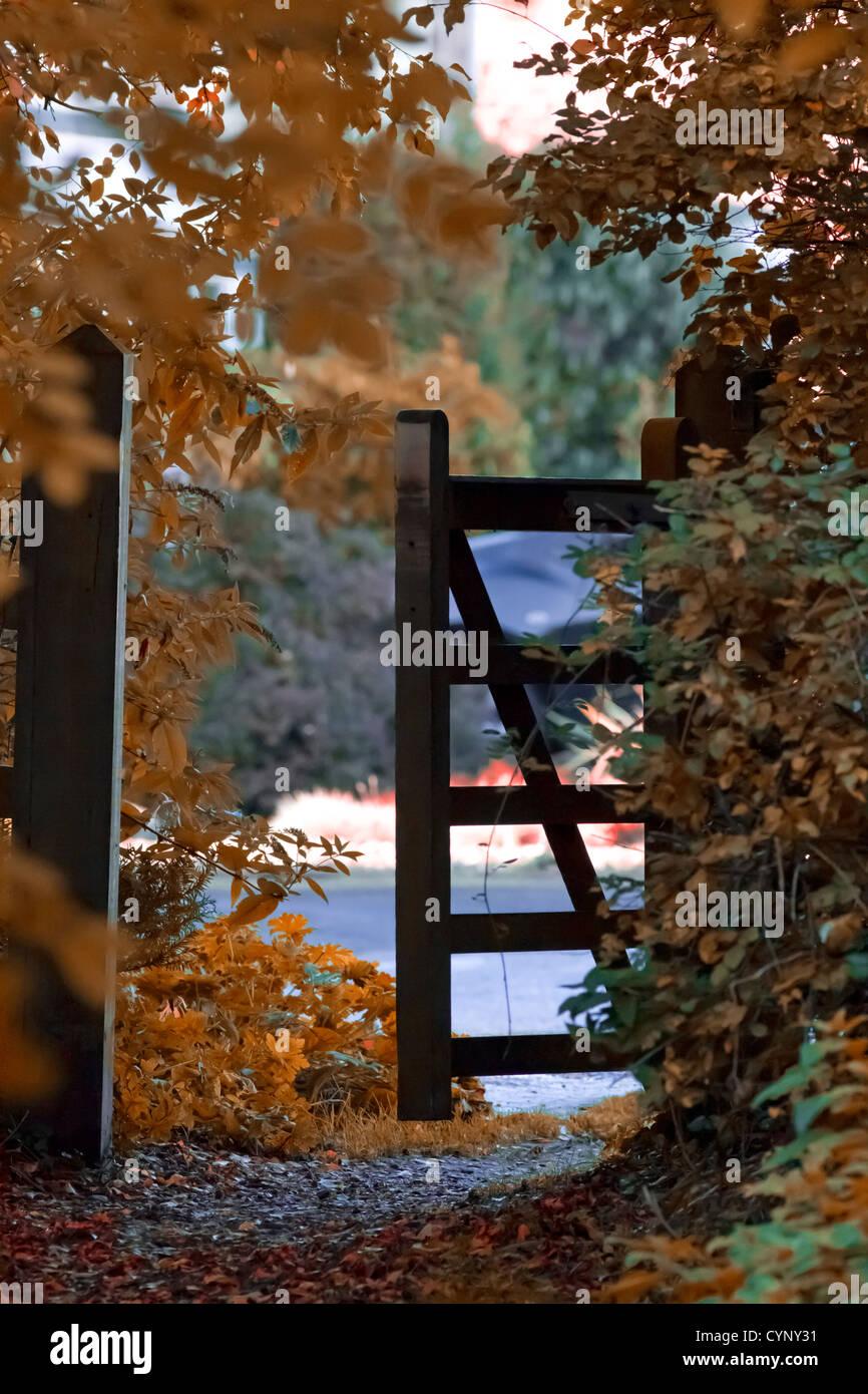 autumnal-gate-scene-CYNY31.jpg