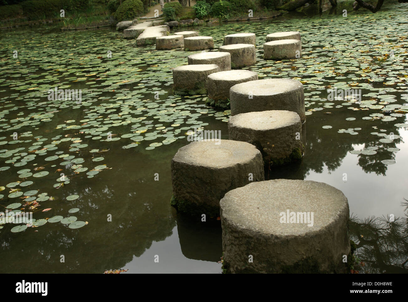 Stepping stones over a water lily pond in a zen garden at for Garden pool zen area