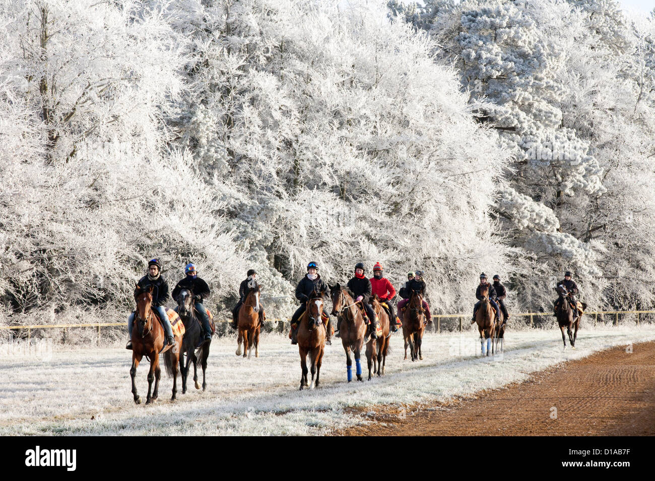 horses-and-jockeys-riding-on-a-frosty-wi