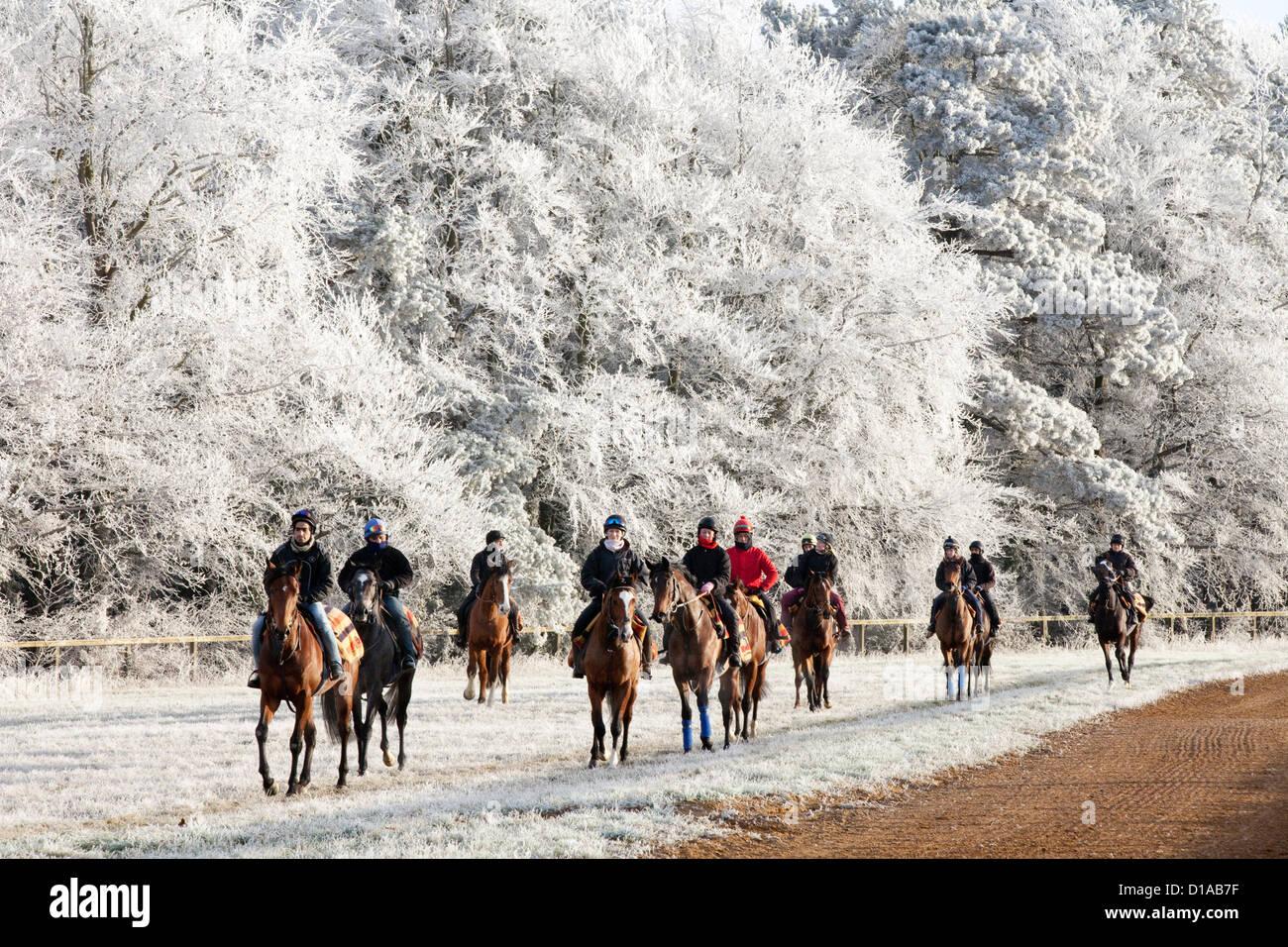 horses-and-jockeys-riding-on-a-frosty-wi