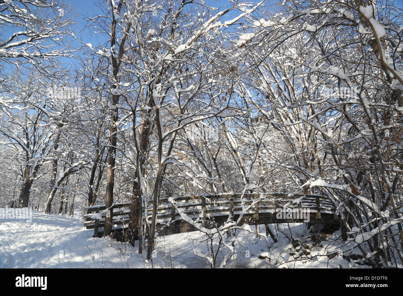 a-foot-bridge-covered-in-snow-in-a-park-