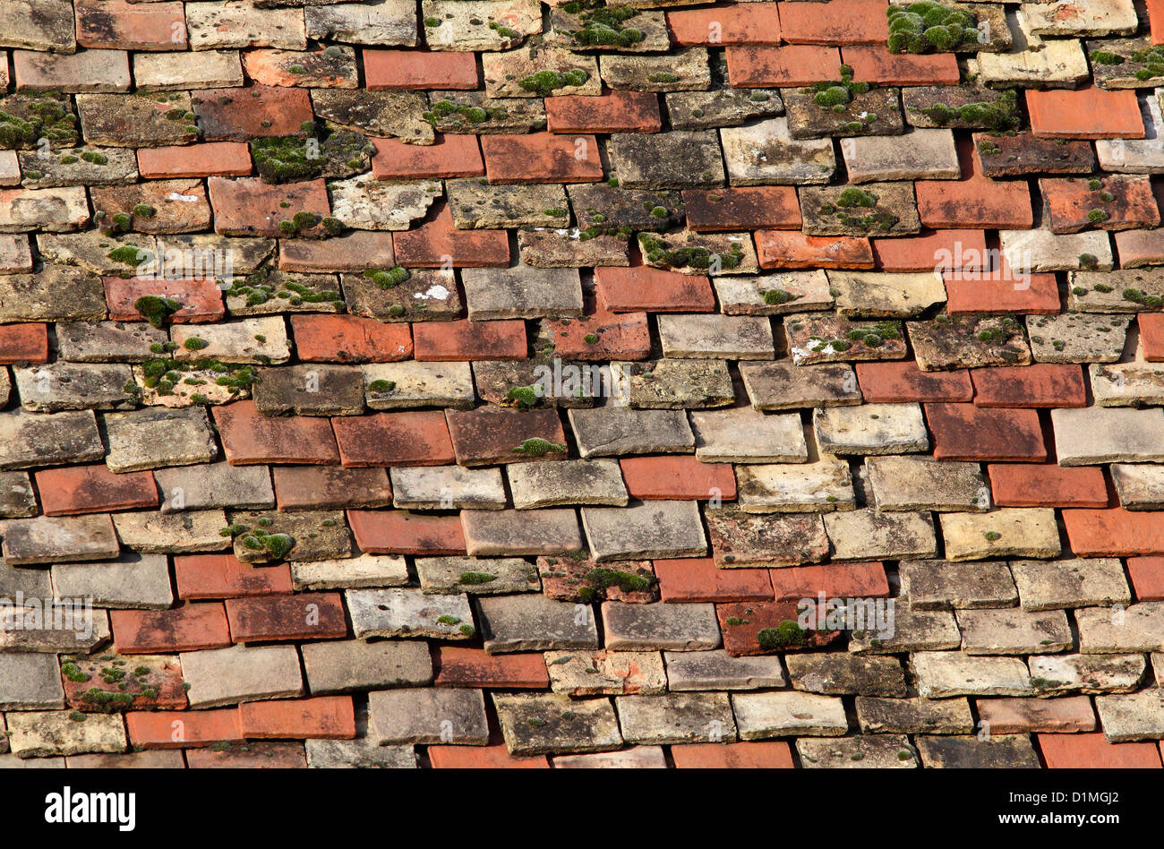 old-roof-tiles-D1MGJ2.jpg