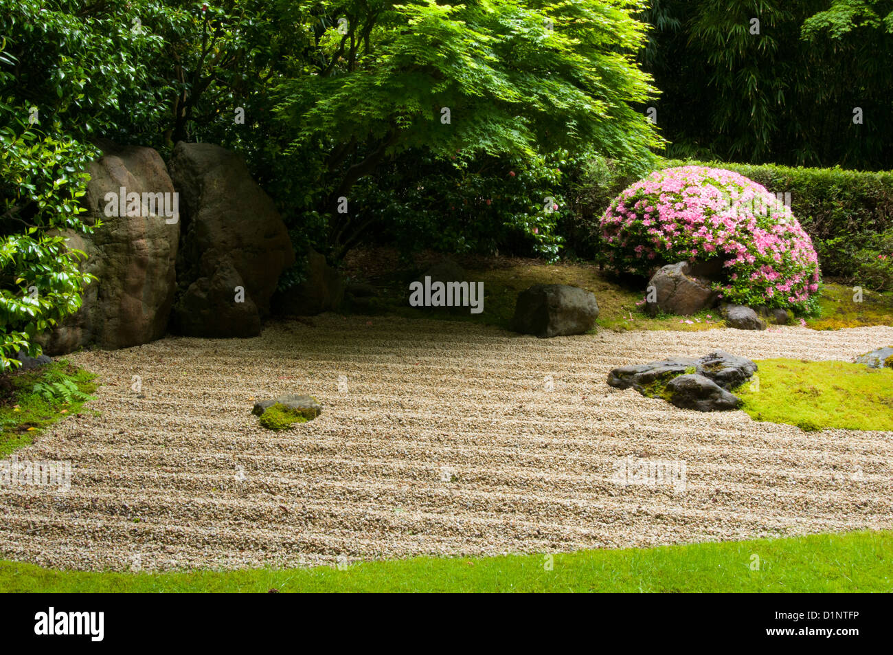 Zen garden in the japanese tea garden golden gate park for Koi pond japanese tea garden san francisco