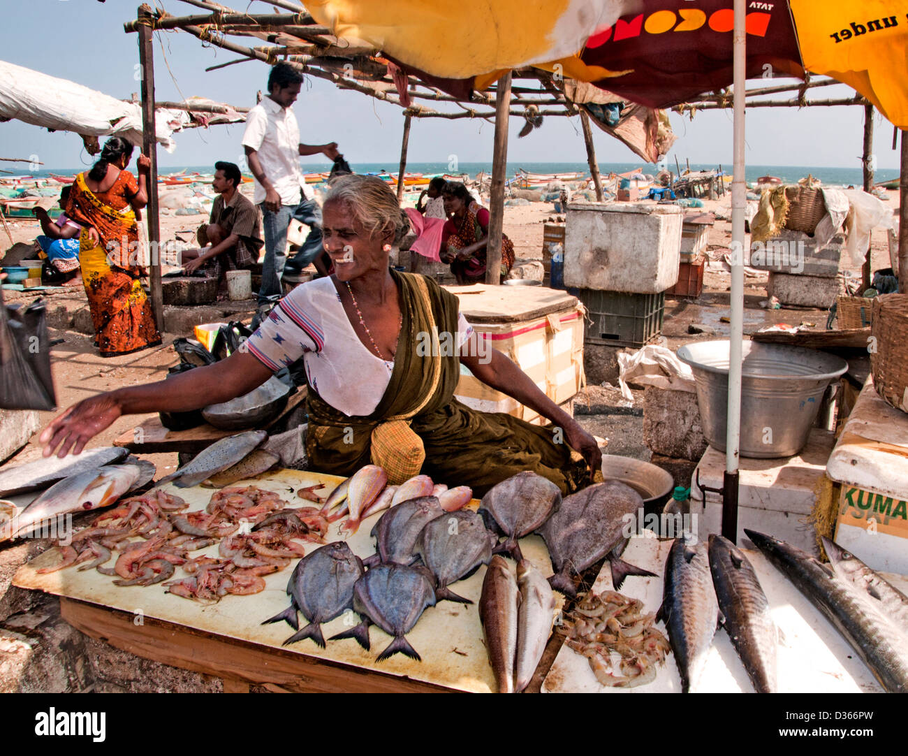 Fish market fishmonger fishing port chennai madras for Village fish market