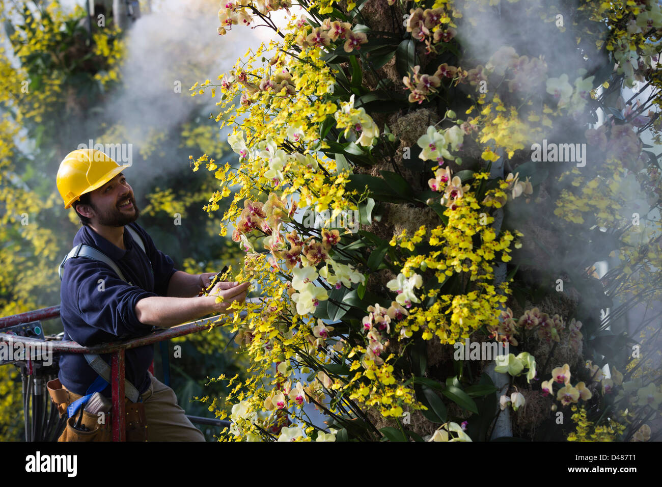 annual-orchid-festival-at-kew-gardens-lo