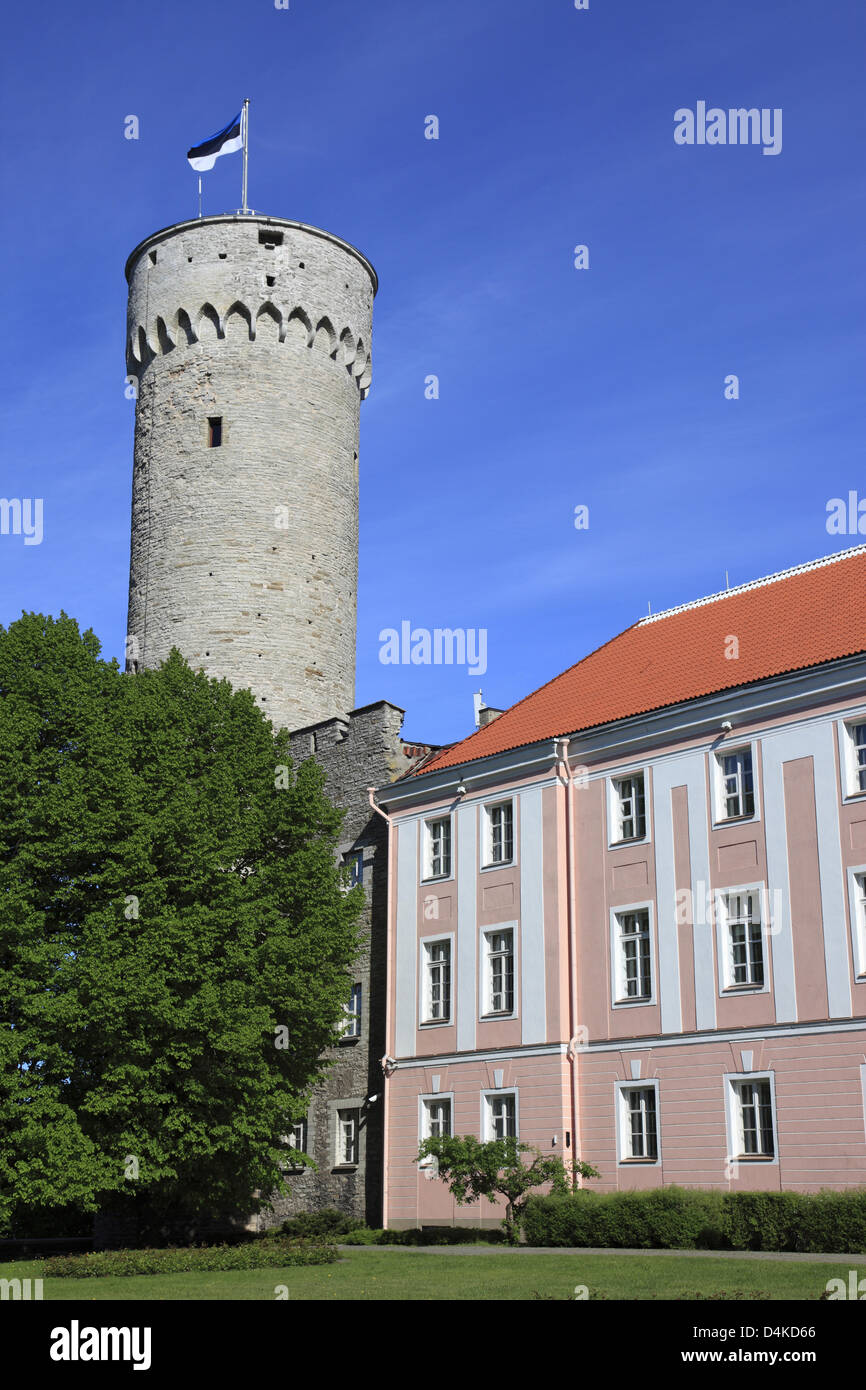 The historic castle tower and a part of the parliament building are pictured in Tallinn, Estonia, June 2009. The Stock Photo