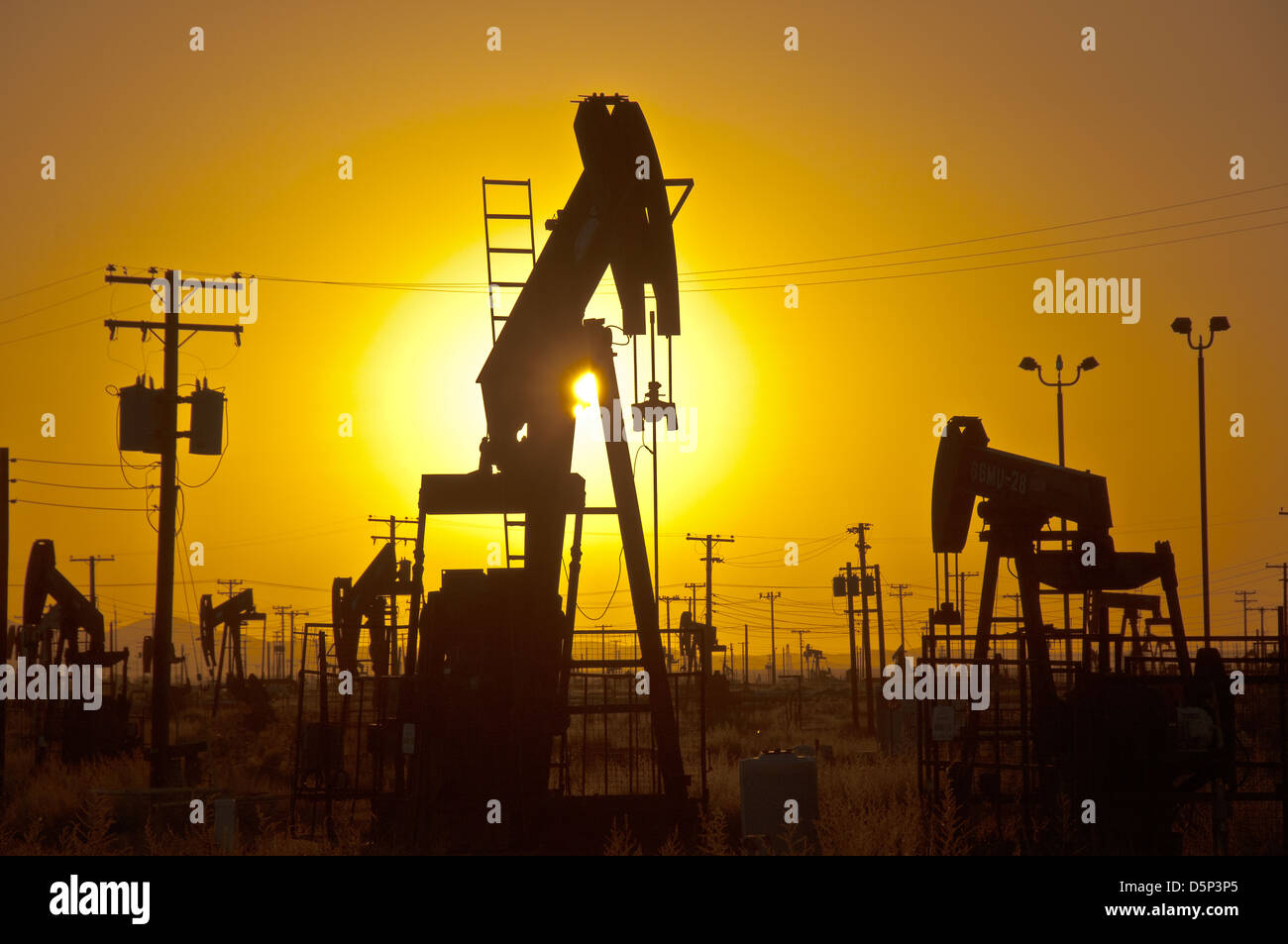 oil-pumps-at-sunset-in-california-D5P3P5