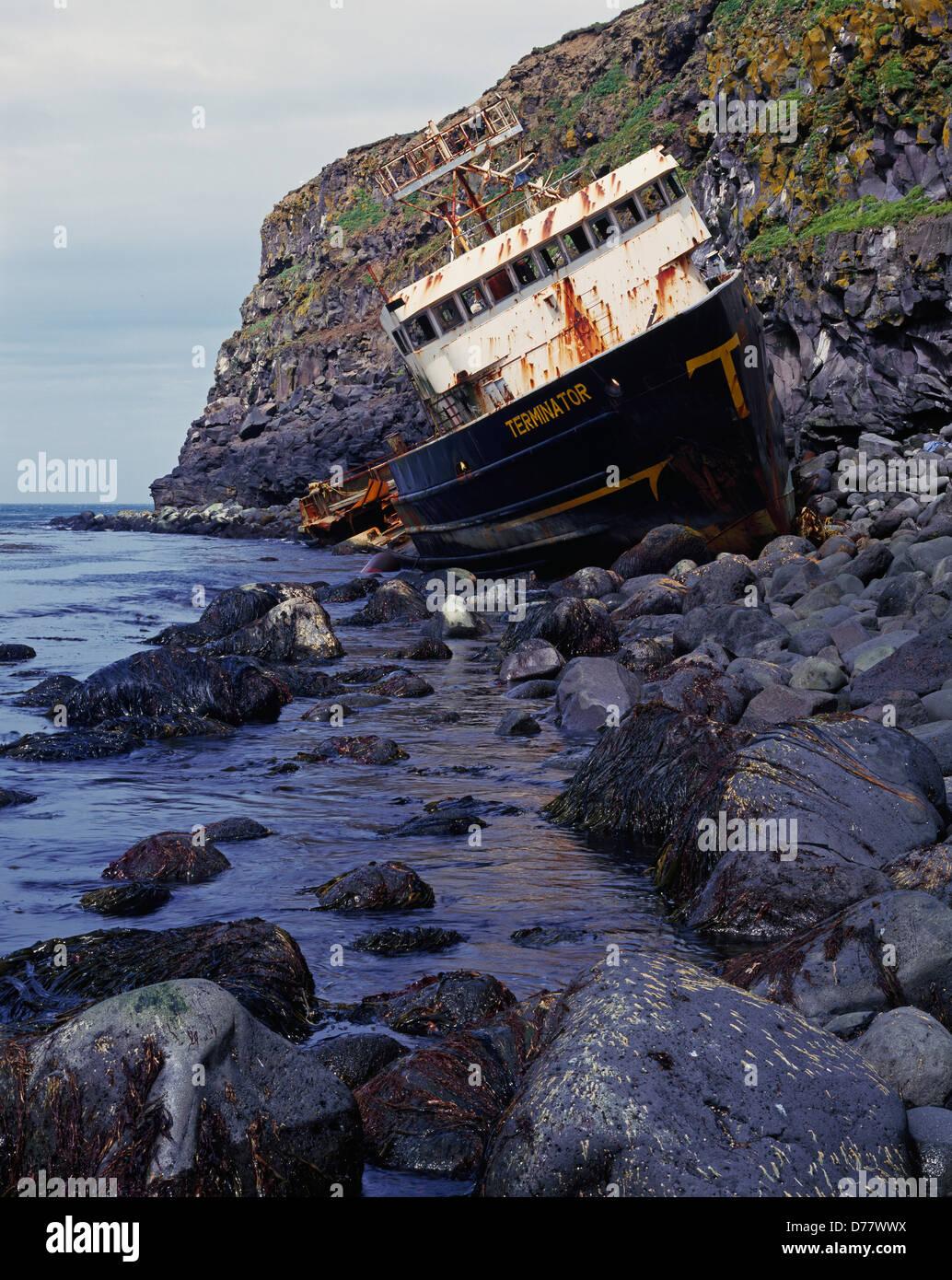 Pribilof Islands | Birding for Life |Saint Paul Alaska