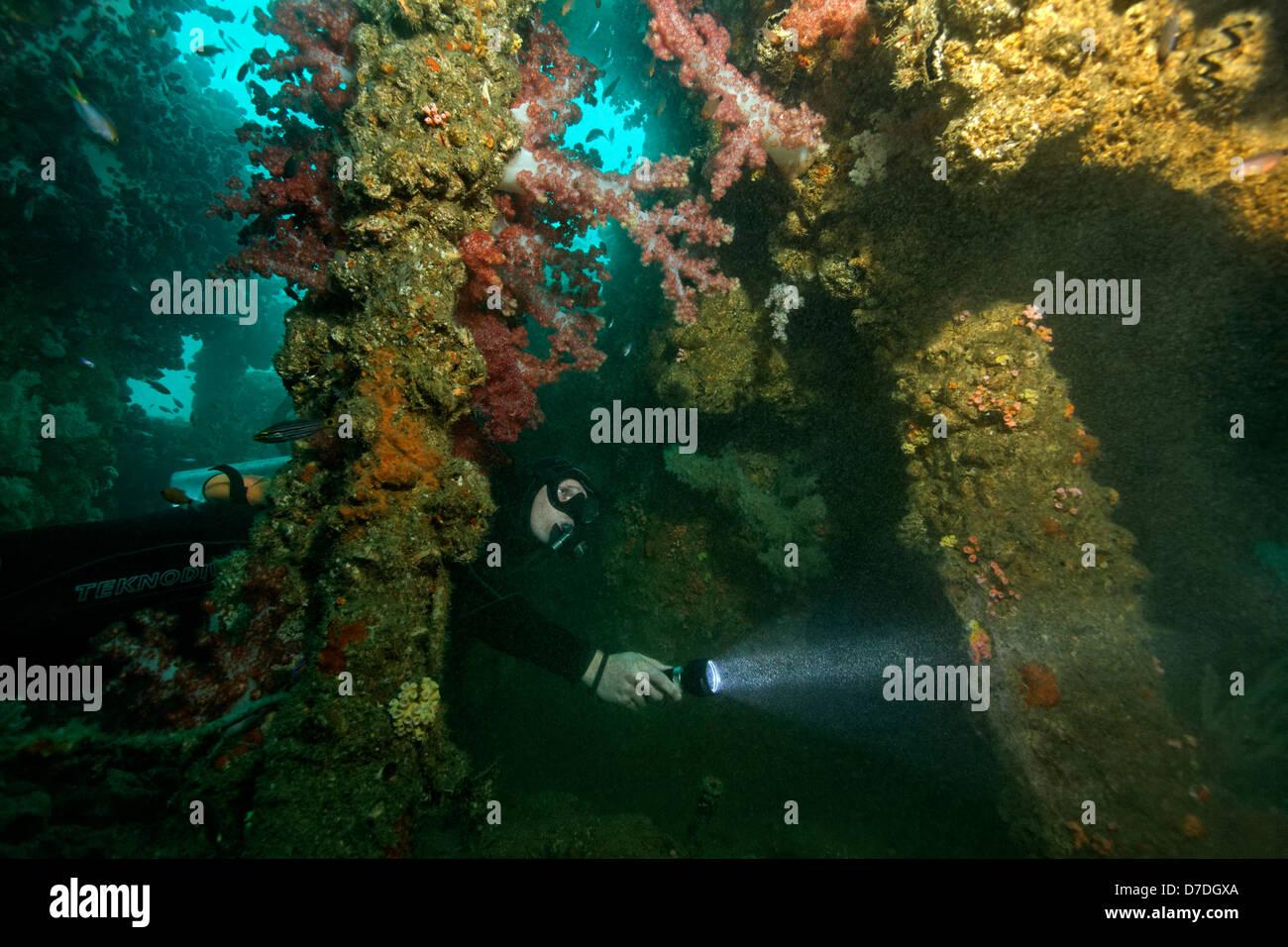 Scuba Diver at Wreck City of Winchester, Hallaniyat Islands, Arabian Sea, Oman Stock Photo