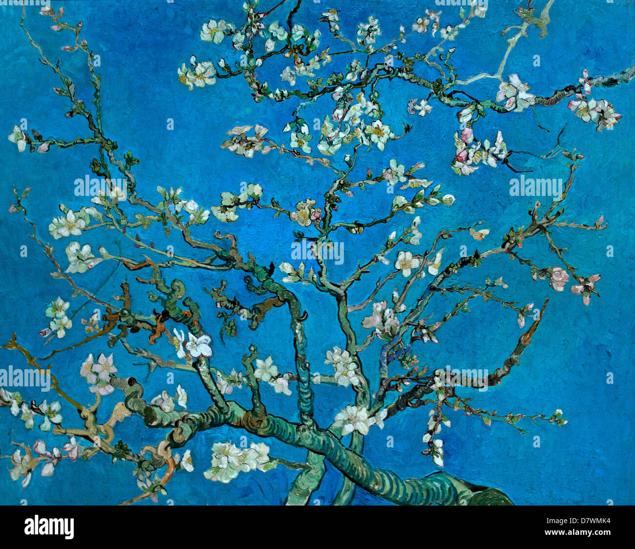 branches with almond blossom 1890 japonism vincent van gogh 1853 stock photo royalty free. Black Bedroom Furniture Sets. Home Design Ideas