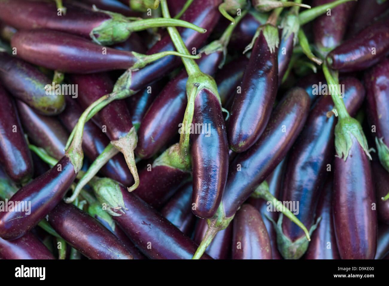 asia india karnataka madikeri eggplant on the market stock photo royalty free image. Black Bedroom Furniture Sets. Home Design Ideas