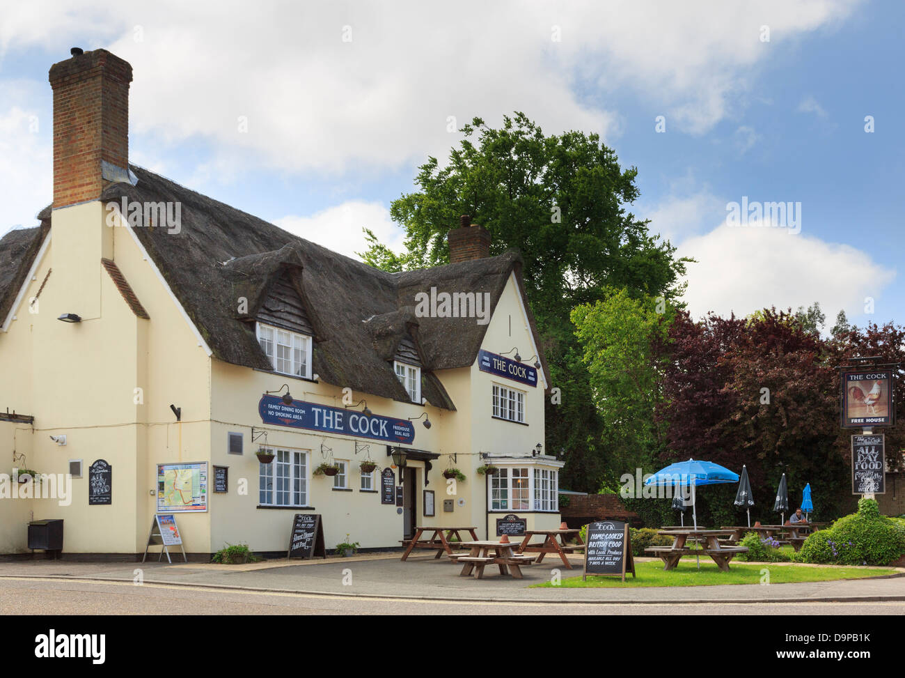 The Cock Thatched Pub With Beer Garden In Historic Village
